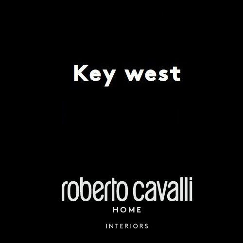 italy01 Technical Sheet Roberto Cavalli Home Interiors Key West chair click to download